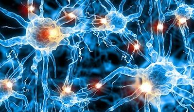 neurotransmission-breakthrough-neurosciencenews
