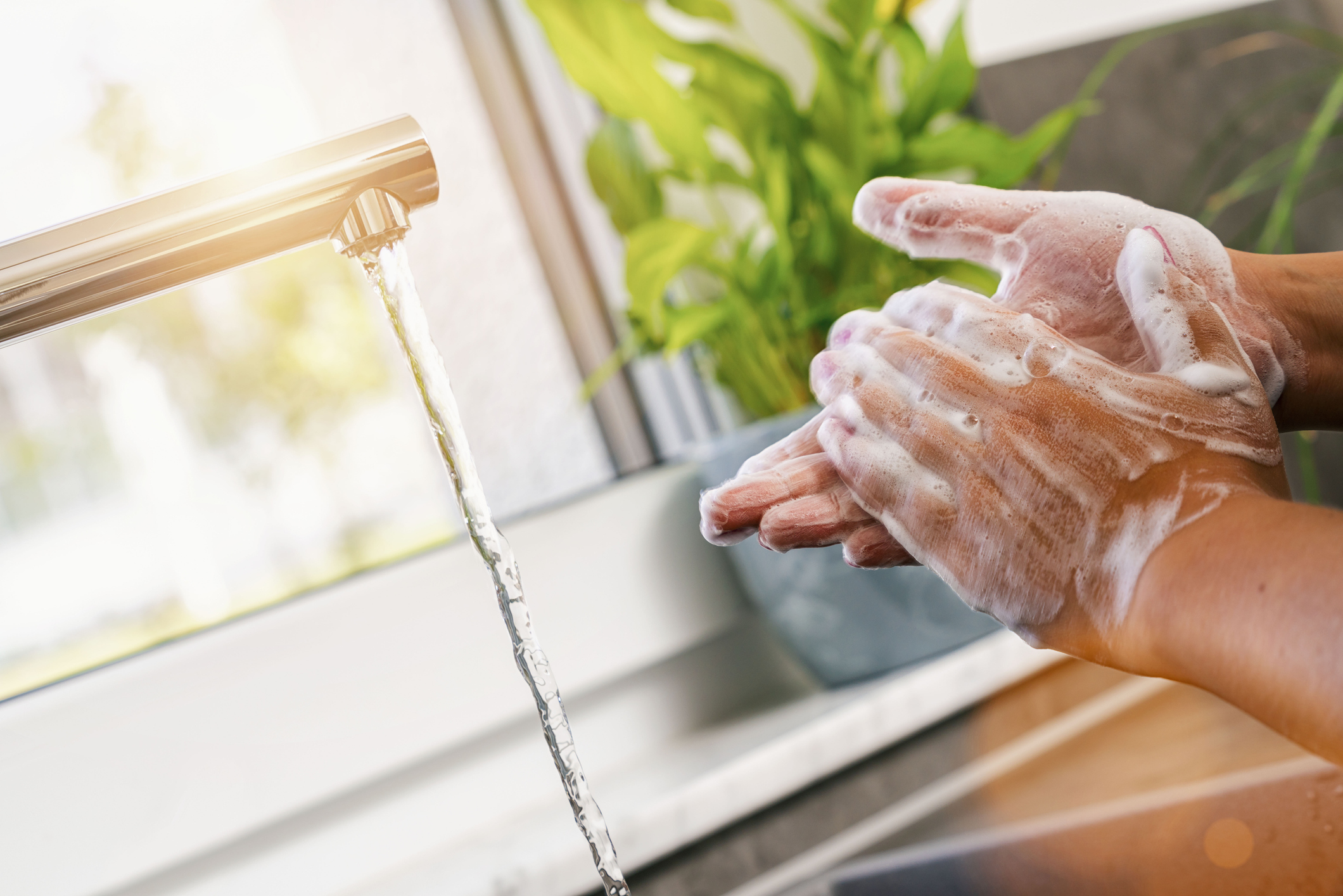 Wash Your Hands and Take Your Probiotics